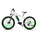 Elektrisches Fahrrad mit breitem Gummireifen-Schnee-Fahrrad-Strand-Fahrrad