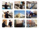 De commerciële Leverancier 300kg/24day van de Machine van het Ijs van de Vlok