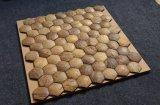 per il mosaico naturale dei Cochi di disegni dei mosaici delle coperture della noce di cocco della decorazione della parete