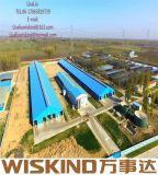 Moderno edificio Wiskind rápido Rentable Quakeproof Estructura de acero prefabricados para almacén