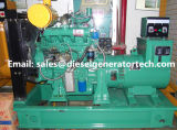 75kw open Type/de Stille/ReserveReeks van de Generator van Ricardo Electric Diesel