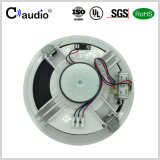 6.5 Zoll-aktiver Lautsprecher mit Papierkegel für PA