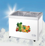 Congelatore profondo della cassa con il singolo portello