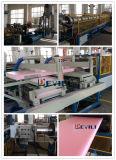 Machines van de Apparatuur van de Extruder van het Blad van lage Kosten de XPS Schuim