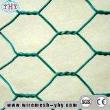 Покрынное PVC гальванизированное плетение сетки двойной закрутки шестиугольное