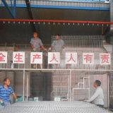 Il PVC caldo di vendita ha ricoperto la rete fissa saldata obbligazione della rete metallica