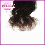 最もよい品質の安く加工されていない卸し売りバージンのブラジルの毛の拡張