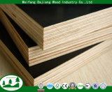 Poplar core Commercial Plywood with film Faced for Construction
