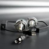 Preiswertester Auto-Scheinwerfer der Scheinwerfer-Sonnenblume-H4 LED