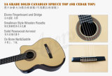 Гитара Cutway Smallman тавра Aiersi электрическая классическая (SC098SCE)