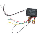 전기 미터 Wj909 100A를 위한 릴레이를 걸쇠를 걸기