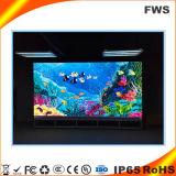 P16 Outdoor pleine couleur écran DIP