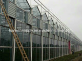 Циркуляционный вентилятор отработанного вентилятора Foshan промышленный для фабрики