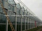 Foshan 배기 엔진 공장을%s 산업 환기 팬