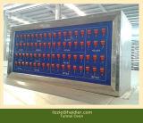 Horno Túnel de la producción de grandes equipos de cocción de pan de pita