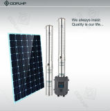 DC 태양 펌프 관개 태양 잠수할 수 있는 펌프