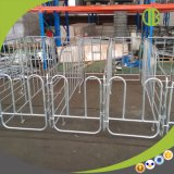 Stalle de limitation de truie de matériel de porc pour le bétail