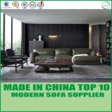 Nordische Wohnzimmer-Möbel-modernes Sofa-Bett