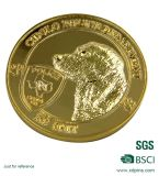 el diseño 3D muere la divisa pulso del oro de la antigüedad de la divisa (XD-B19)