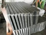 Matériau de construction en pierre Naturtal pour carrelage de sol/Flooring Tile/Paving Stone/Fenêtre Stairtread/seuil/comptoir/Wall Tile