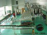 8000bph het Vullen van het Sap van de Fles van het glas Machine