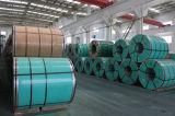 Het krachtige Hete Blad van de Rol van het Roestvrij staal van de Verkoop 310S/2520