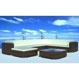 Conjunto al aire libre European-Style de los muebles de la rota de la espuma seca rápida