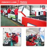 Macchina 500W del laser della fibra per lo strato per il taglio di metalli