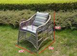 Vector cómodo exclusivo y silla de la rota del PE del ocio del jardín al aire libre