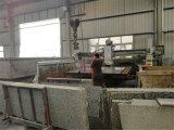 Pedra automática/Ponte de mármore e granito máquina de corte