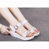 Высокое качество сандалии лета женщин обувает ботинки платья (FTS1020-6)