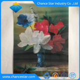 Lijst Placemat van het Huisdier van de douane 3D Lenticular Plastic