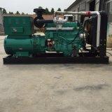 gruppo elettrogeno diesel del motore 300kVA