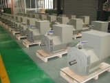 Brushless Alternators van China - Stamford Type 100kVA (JDG 274C)