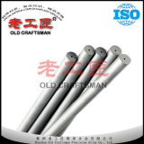 Carboneto de tungstênio Rod com 2 furos retos do líquido refrigerante de China