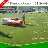 اصطناعيّة عشب كرة قدم درجة ([ست])