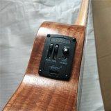 OEM 연주회 방침 전기 단단한 Koa 청각적인 하와이 우쿨렐레
