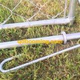 Établissements galvanisés de passage de crabot de maillon de chaîne