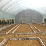 Het nieuwste Enige Groene Huis van de Spanwijdte voor Groente