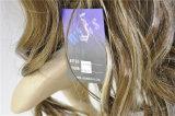 耐熱性100%年のKanekalonの総合的な毛のかつら