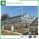 De Groene Huizen van het Blad van het Polycarbonaat van de bloem/van het Fruit/het Groeien van Groenten met het Systeem van het Zonnescherm