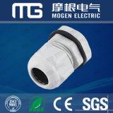 Ral7001 Pg Mg M Nylon Imperméable PA 66 Glandes de câble avec joint en caoutchouc et noix