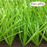 Erba sintetica/raduno artificiale del tappeto erboso per la corte di gioco del calcio (JDS-50)
