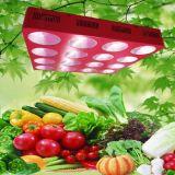 商業農業の温室のUesd 1200Wの穂軸LEDのプラントはライトを育てる