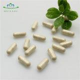 혈액 지방질을 감소시키기를 위한 건강식 은행나무 Biloba 잎 캡슐