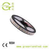 Nuovo doppio indicatore luminoso di striscia di riga 5050 120LED/M 20mm 600LEDs LED della parte superiore RGB+W