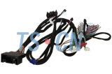 T-faisceau+3.5mm Hyundai-2RCA audio de voiture câble personnalisé du faisceau de l'automobile