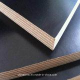 El negro marina de la madera contrachapada/la película de Brown hizo frente a la hoja de la madera contrachapada para los materiales de construcción
