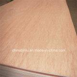 Madera contrachapada comercial de /Bintangor de la madera contrachapada de /Okoume de la madera contrachapada de la base del álamo/del pino para los muebles