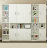 Большой свободно Bookcase шкафа книги сочетание из
